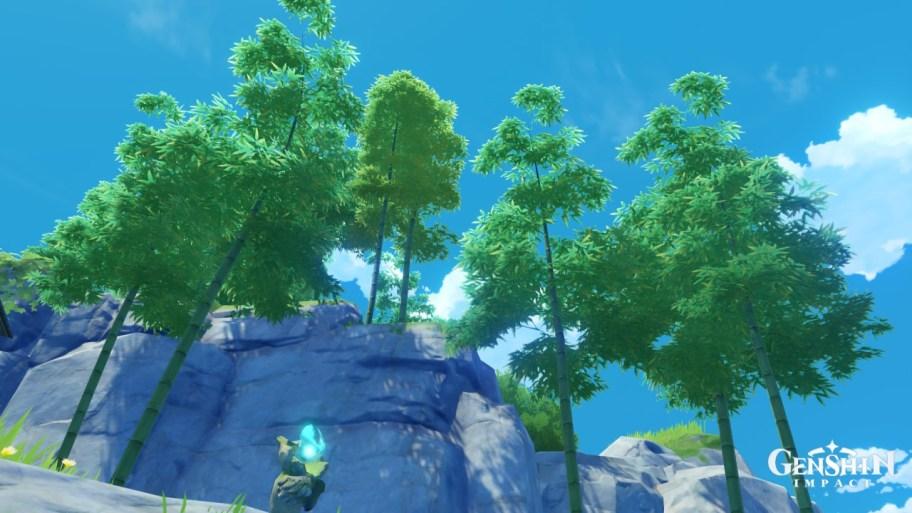 Segmento de bambú de impacto Genshin