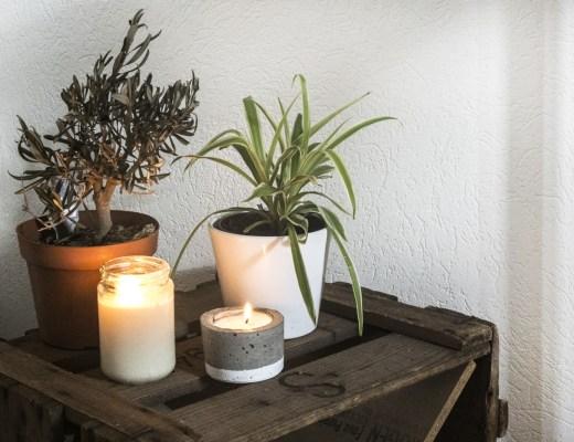 DIY bougie à la cire de soja et son pot en béton
