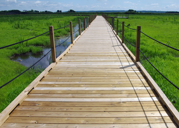 Floating Boardwalk at the Horicon National Wildlife Refuge