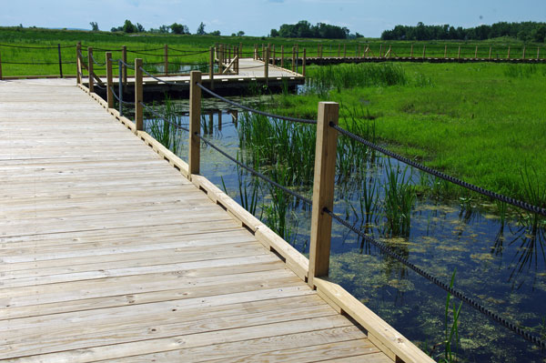 Floating Boardwalk at the Horicon National Wildlife Refuge