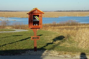 Library at the Horicon Marsh