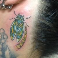 蝉のタトゥー画像