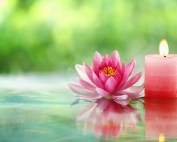 Horizon Aromatics - Candle Masking Agents Fragrances