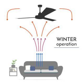 Winmill designer Fans - Winter