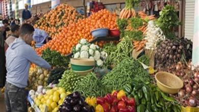 Photo of وزارة الفلاحة: إنتاج الخضروات يغطي حاجيات السوق إلى غاية دجنبر 2020