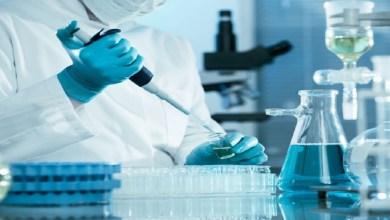 صورة الأمراض المقاومة للأدوية تودي بحياة 700 ألف شخص سنويا