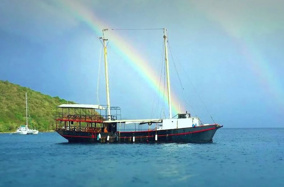 BVI News All The Latest Charter News From Horizon