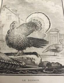 'Histoire Naturelle, Générale et Particulière', c. 1750