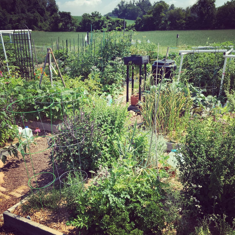 Community Gardens Horn Farm Center For Agricultural