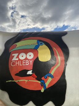 Zoo Chleby Model Milking Cow