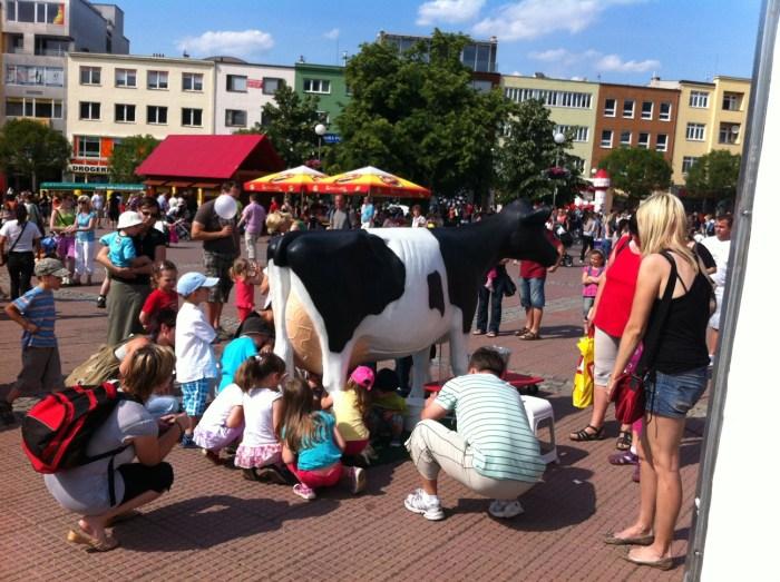 3D Model Milking Cow in Czech Republic