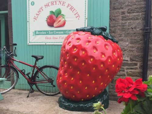 Giant Strawberry Fibreglass Model @ Farm Shop