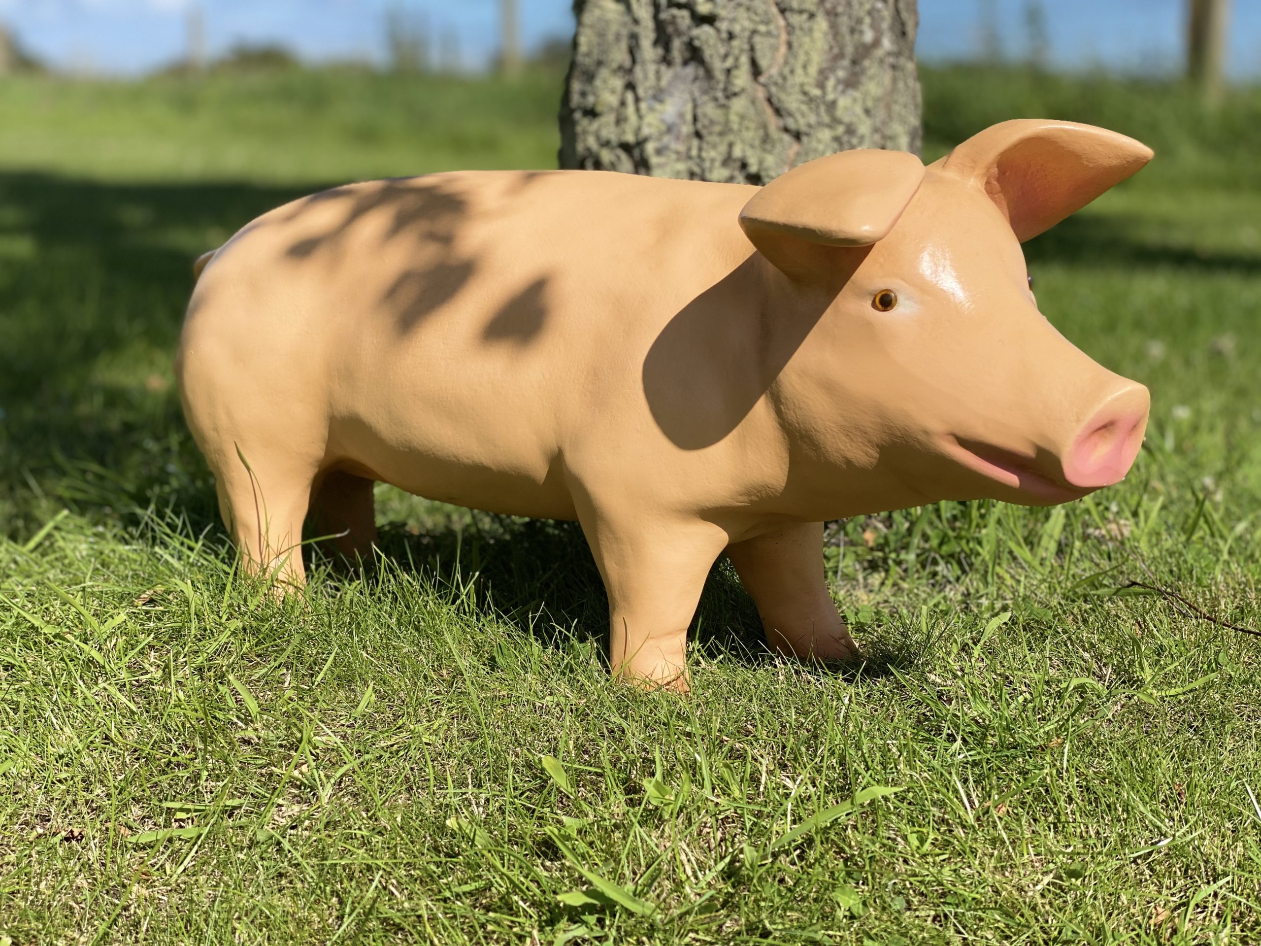 Life Size 3D Fibreglass Piglet Model hiding in the shadows