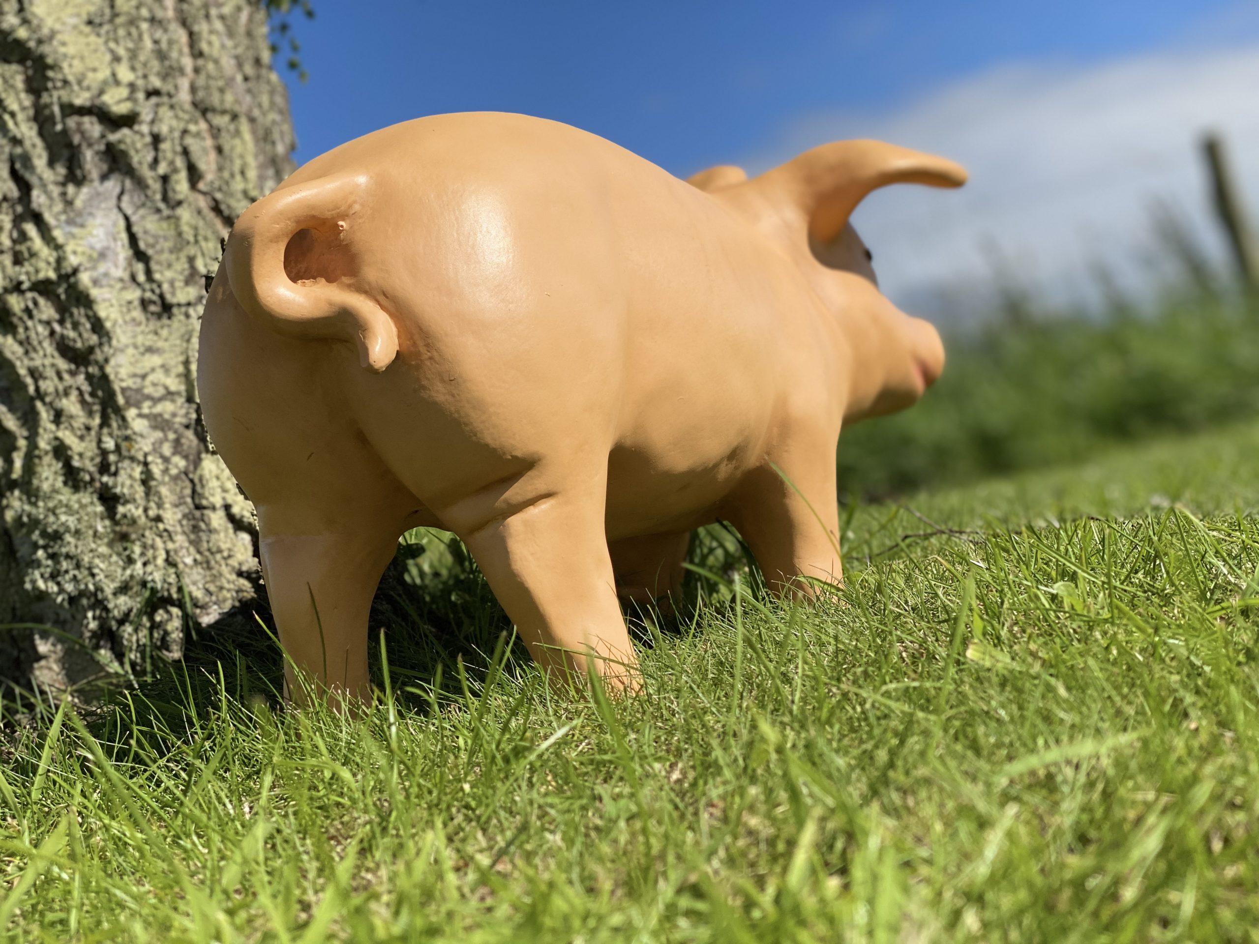 Life Size Fibreglass Piglet 3D Model beside tree