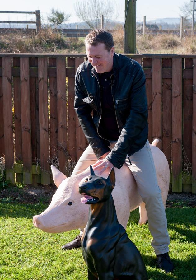 Tuffers on Pig Boar Model