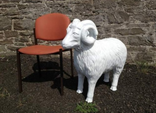 Life Size Model Sheep with Horns