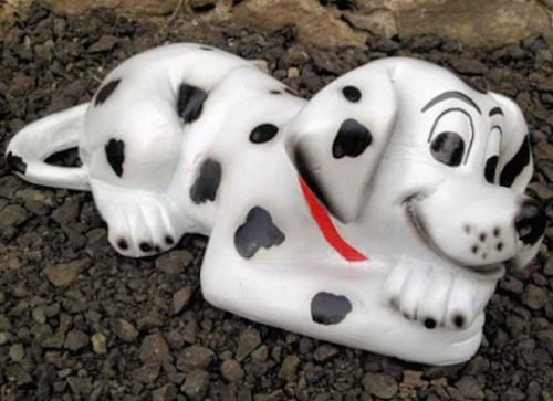 Dalmation Puppy Dog Lying Model