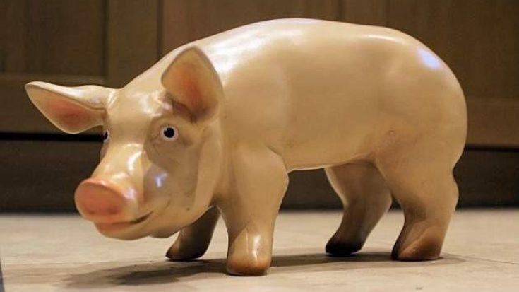 3D Model Piglet