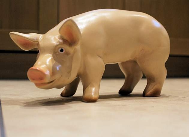 Life Size Model Piglet