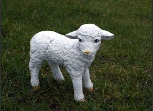 Lamb Standing Tall Model