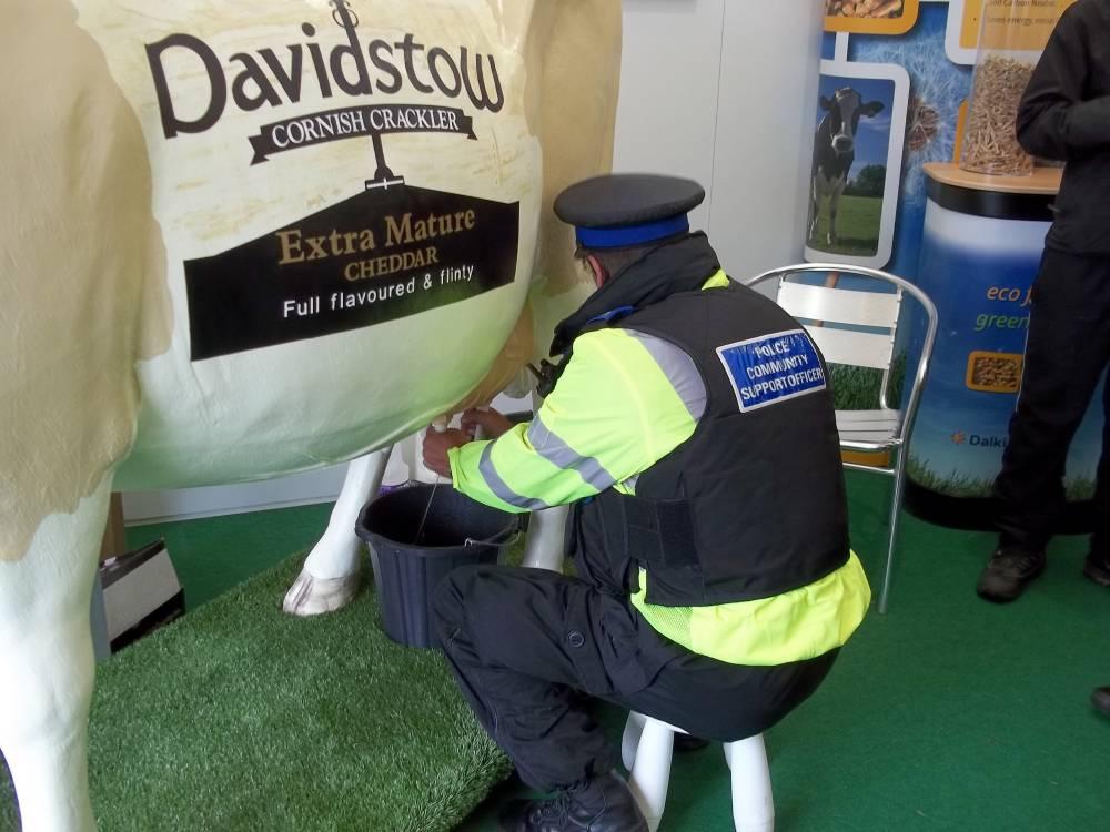 Davidstow Cornish Crackler