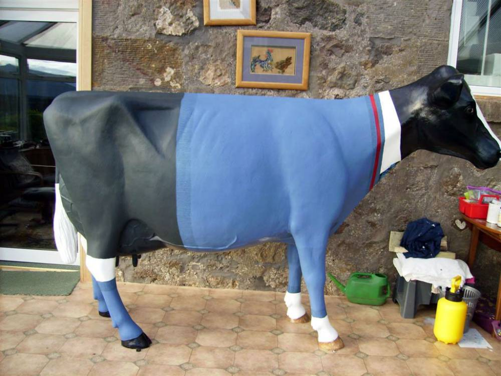 Suited Cow
