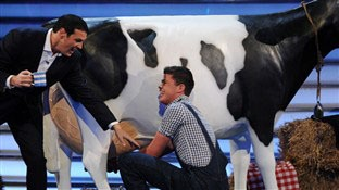 Paddy McGuinness & Take Me Out Model Milking Cow