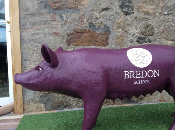 3D Life Size Model Sow Pig