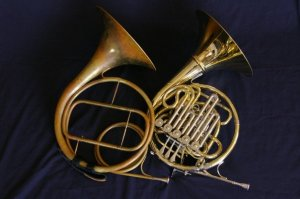 Natural-horn-triple-horn
