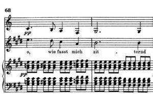 Schubert snip