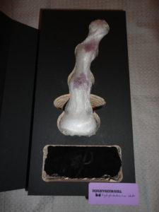 eva ceramic dildo