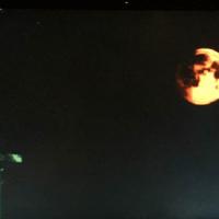 American Horror Story: Roanoke Update! Ryan Murphy Spills More Details On Big Twist!