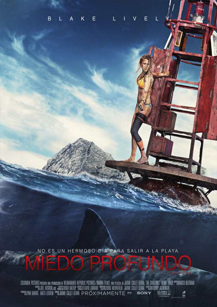 the shallows dvd