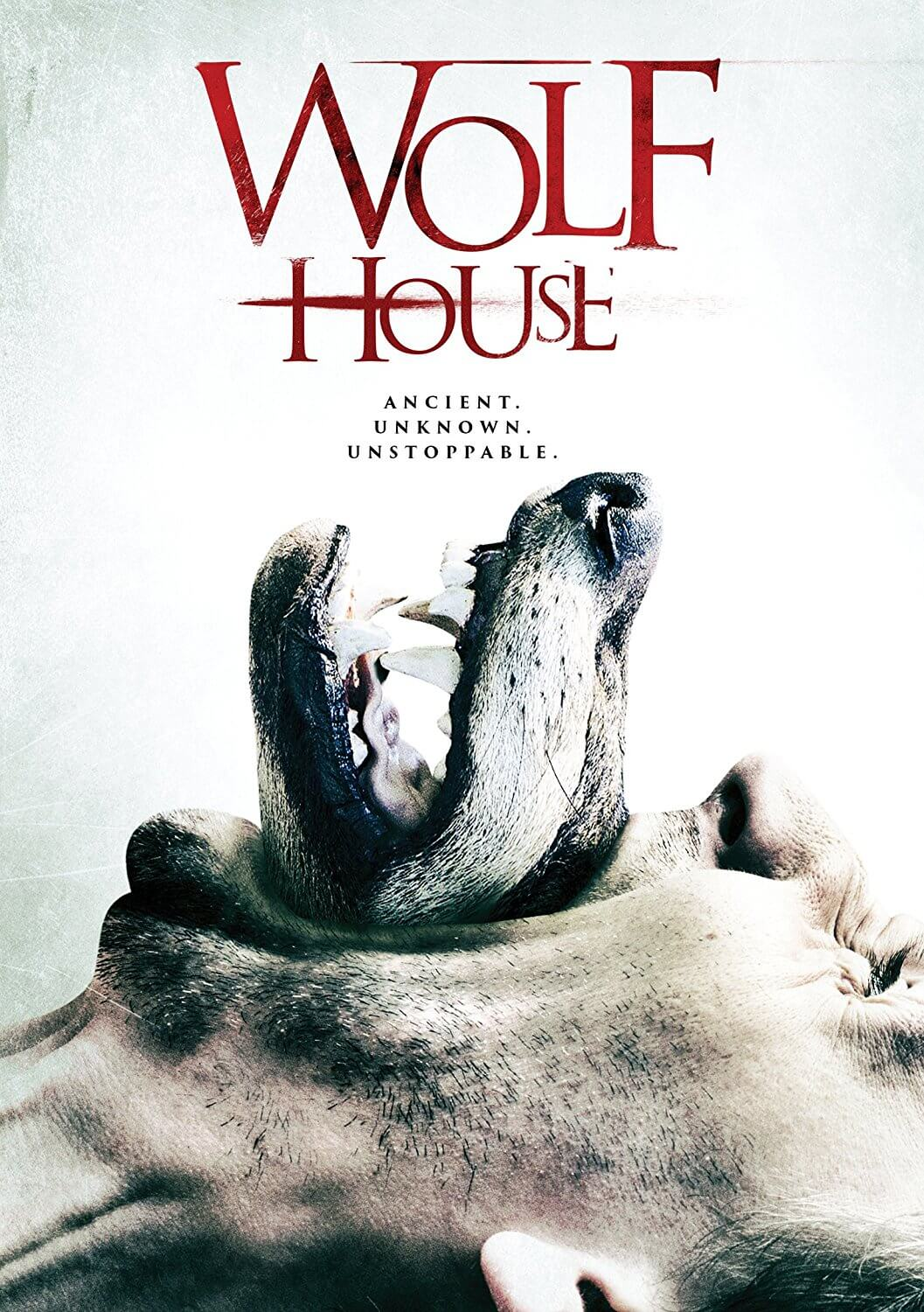 'Wolf House' Bites into Home Video Next Week, Early Release at Walmart