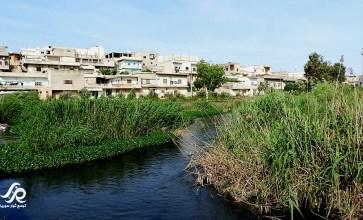 نهر العاصي في ريف حمص الشمالي – عدسة المعتصم بالله صويص