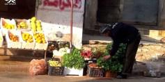 خيرات الأرض يزينها صبر بائع خضار – عدسة محمود بكور