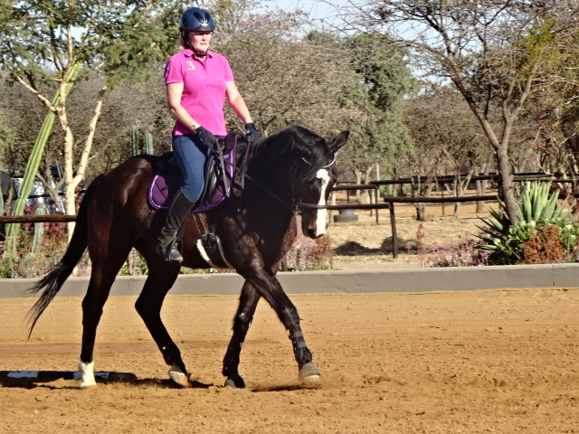 A report on Andrea Harrison's dressage clinic in Botswana