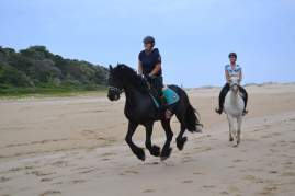 A canter on the beach #heaven
