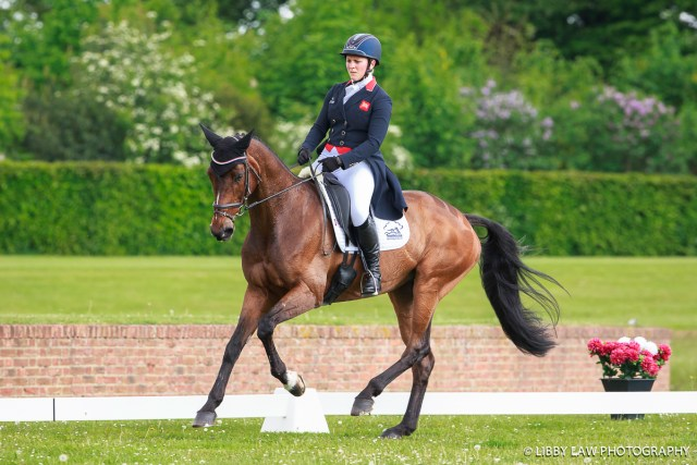 Great Britain's Gemma Tattersall is making a strong bid for a place at Rio; she's in first place on Chico Bella P in the CICO3* after day one of dressage (Image: Libby Law)
