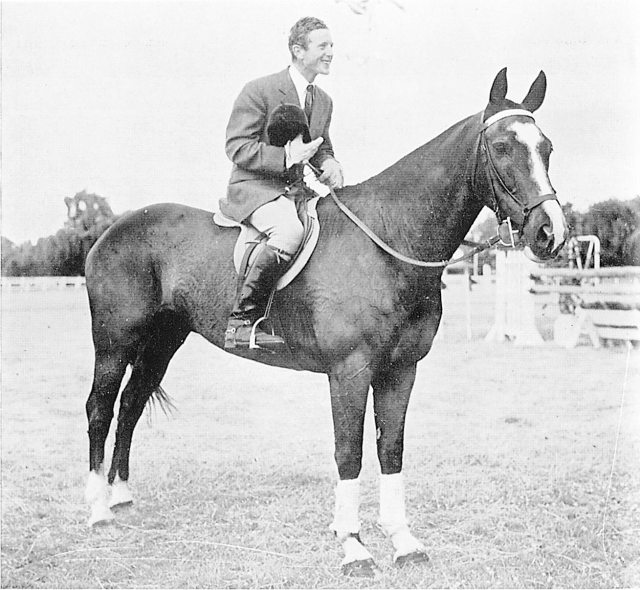 Telebrae was later found to be blind in one eye, but he went on to more show jumping success in the UK (Image: NZHP Library)