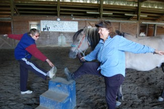 Equine-Assisted-Stretching