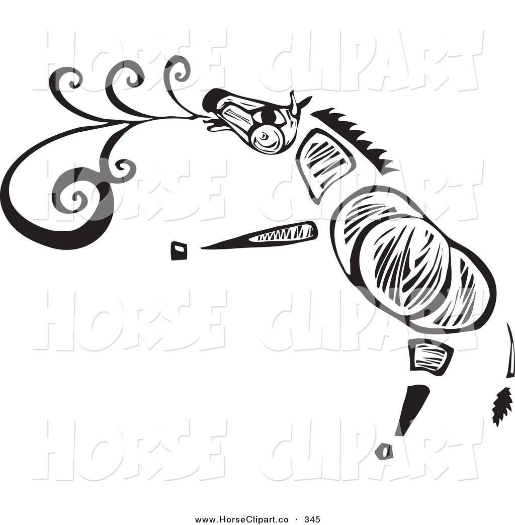 Royalty Free Zebra Stock Horse Designs