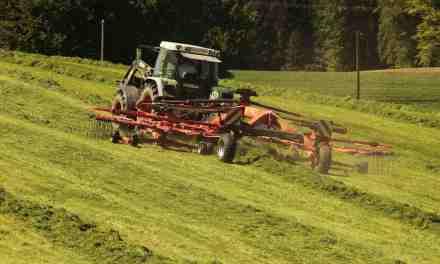 Jordforurening i wraphø og andet grovfoder gør heste syge