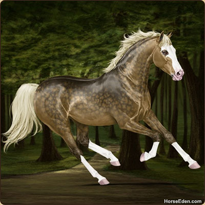realistic horse games # 58