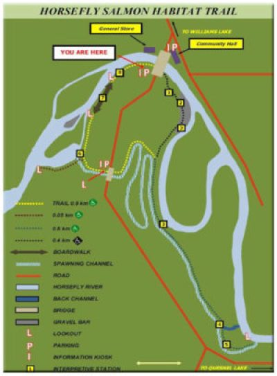 Salmon-Trail-Map