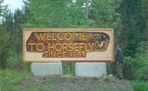 horsefly-001