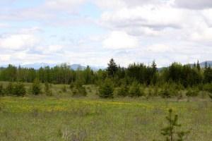 Farm land in BC Canada - 765 Acres - with Private Lake : Moffat Creek Acreage (108/Starlike Lake Road)