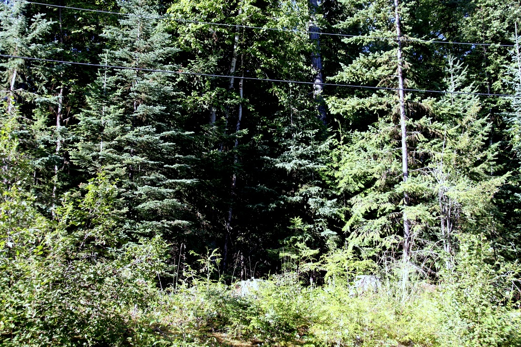 2 Acre Lot near Horsefly Lake - Land for Sale - Lot 13, Brooks Place, Horsefly BC