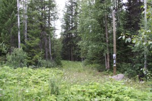 2 Acre Lot near Horsefly Lake - LOT 28 Rodman Road, Horsefly BC
