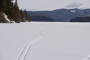 ski trail on Horsefly Lake